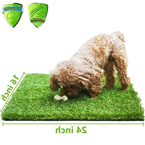 "MTBRO Grass Mat for Puppies Pets, for Potty Training Grass Premium Doormat for Pets Paws, 100oz/sq.Yard, 24""x16"""