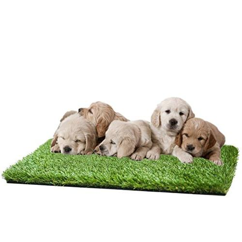 artificial grass mat puppies pets